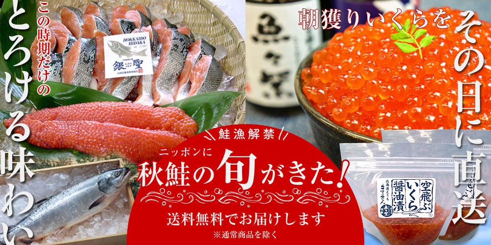 鮭漁解禁!ニッポンに秋鮭の旬がきた!